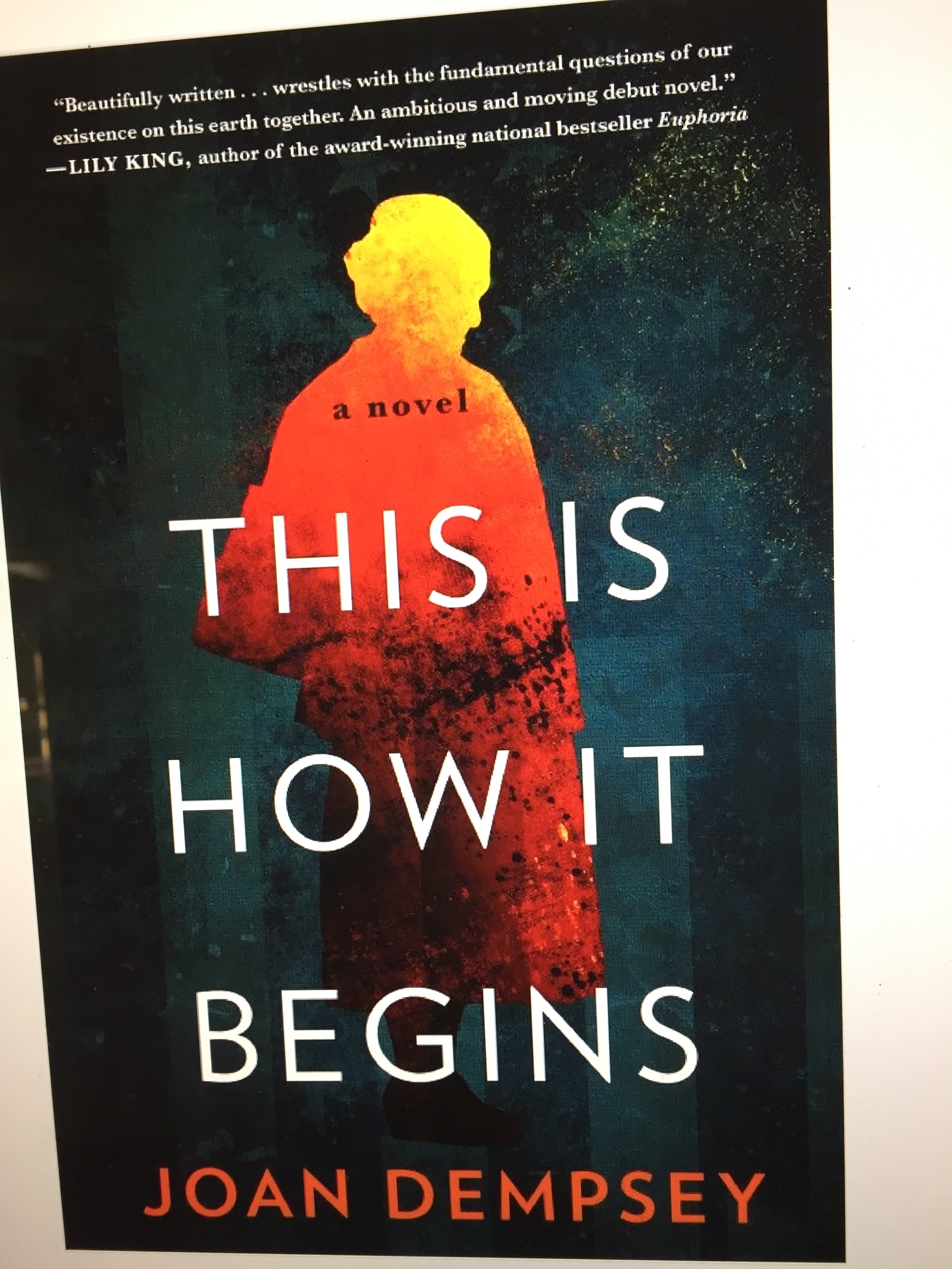 This Is How It Begins >> My Review Of This Is How It Begins By Joan Dempsey Linda S Book